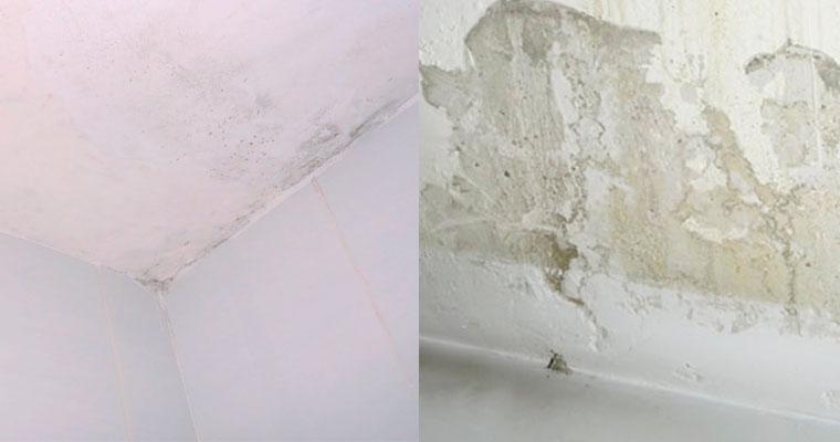 Pintura impermeabilizante: solución para los problemas de humedad